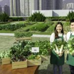 Sino Group Presents City-wide Integrated Green Community Project Farm Together